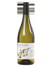 Tramontane IGP Côtes Catalanes Macabeu Blanc 2013