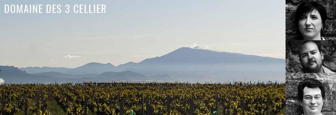Grands vins de Châteauneuf-du-Pape, Domaine des 3 Cellier