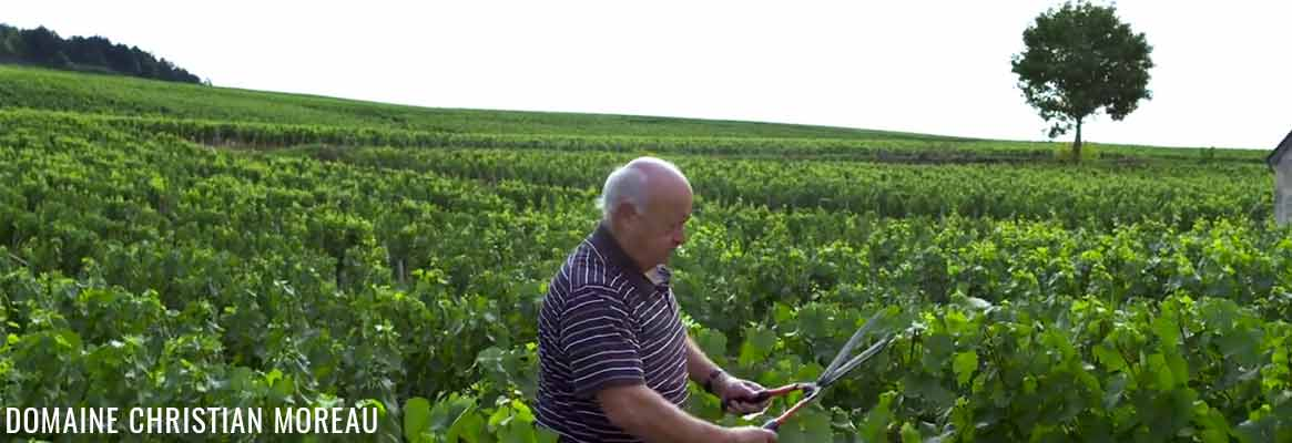 Domaine Christian Moreau, grands vins de Chablis