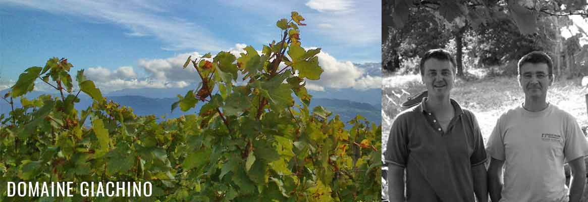 Domaine Giachino, vins de Savoie BIO