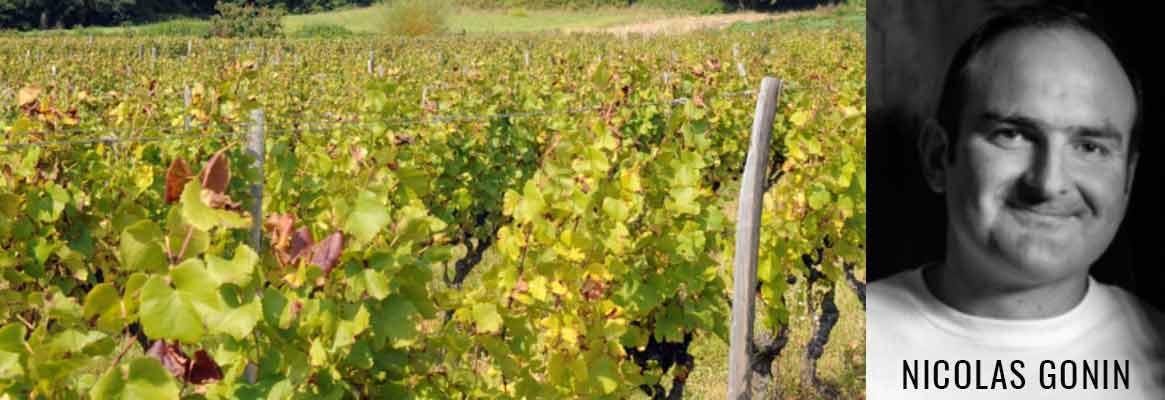 Nicolas Gonin, vins de l'Isère, cépages rares et disparus