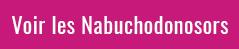 Achetez les Nabuchodonosor de 15 litres