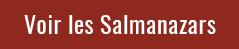 Achetez les Salmanazars de 9 litres