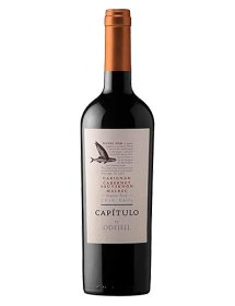 Vin rouge chilien Capitulo Flying Fish 2016 du domaine Odfjell - Malbec Carignan