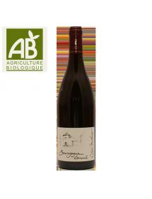 Vin rouge bio Bourgogne Epineuil Côte de Grisey 2016 en stock, livraison 24h
