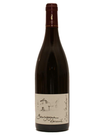 Vin rouge bio Bourgogne Epineuil Tradition 2017 en stock, livraison 24h