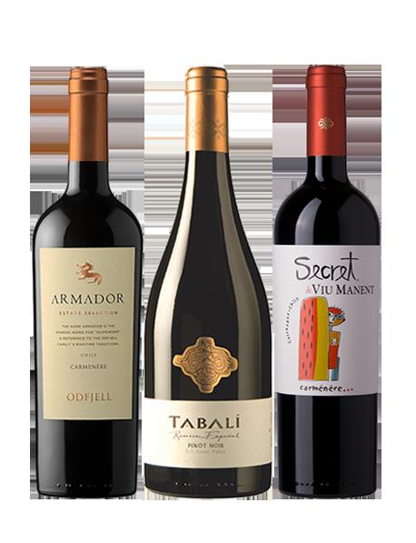 Coffret vin Chili Découverte 3 bouteilles