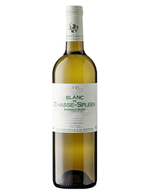 Blanc de Chasse-Spleen 2017 - Grand vin blanc de Bordeaux en stock