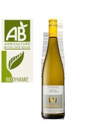Domaine Albert Mann Alsace Riesling Cuvée Albert Blanc 2013