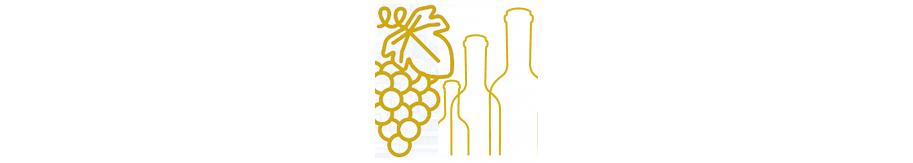Les cépages, les couleurs et les types de vins sur www.labouteilledoree.com