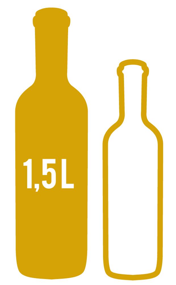 Coffret cadeau vin 1 magnum de 150cl