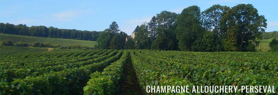 Champagne Allouchery-Perseval, Champagne de la Montagne de Reims