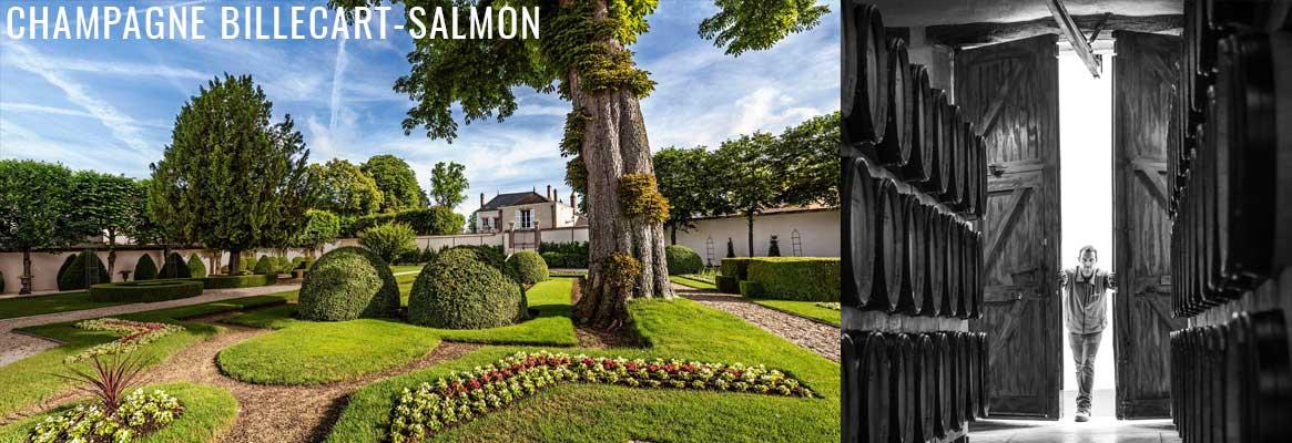 Champagne Billecart-Salmon en vente chez La Bouteille Dorée