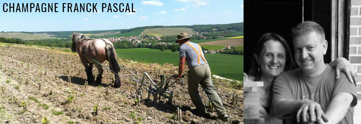 Champagne Franck Pascal en biodynamie en vente chez La Bouteille Dorée