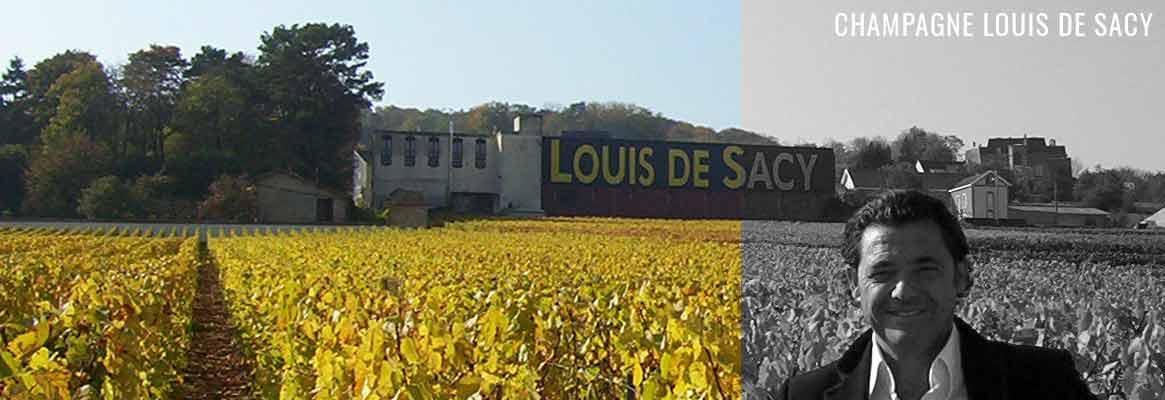 Champagne Louis de Sacy, Grand Cru de la Montagne de Reims