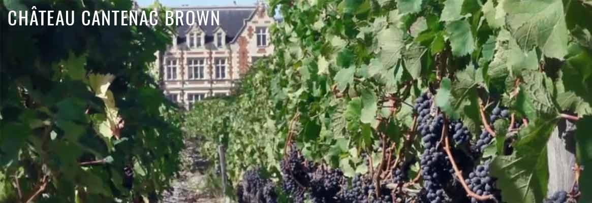 Château Cantenac Brown 3ème grand cru classé de Margaux