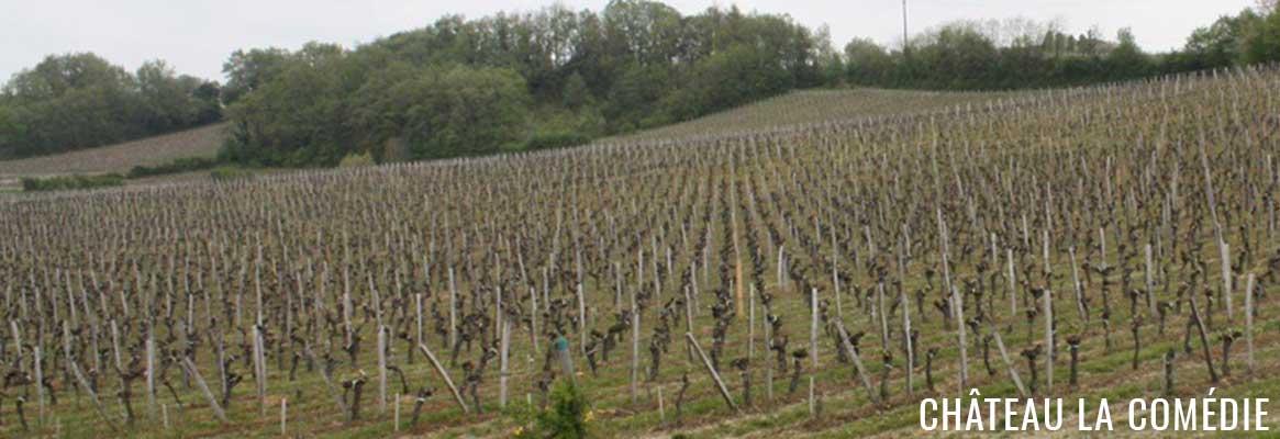 Château La Comédie Castillon Côtes de Bordeaux
