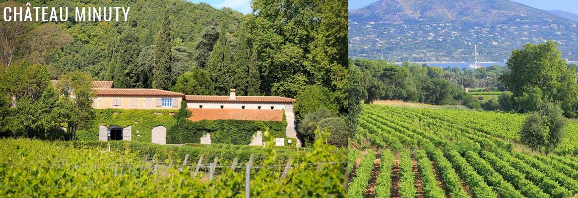 Vins du Château Minuty en Côtes de Provence - Cru classé