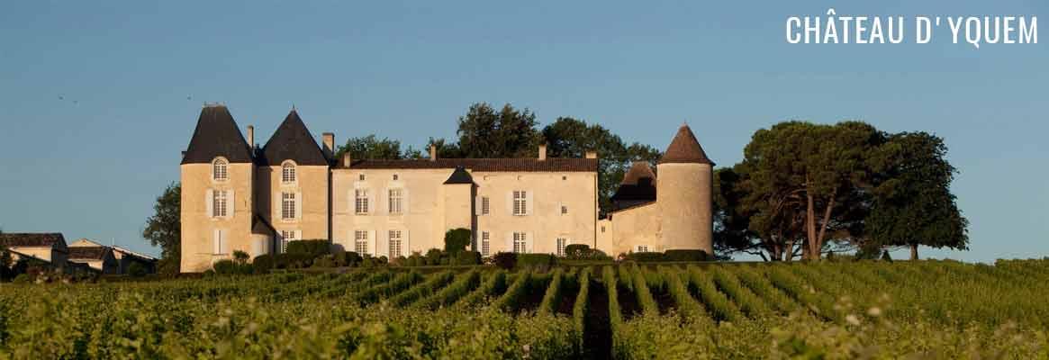 Château d'Yquem, grand vin de Sauternes premier cru classé supérieur