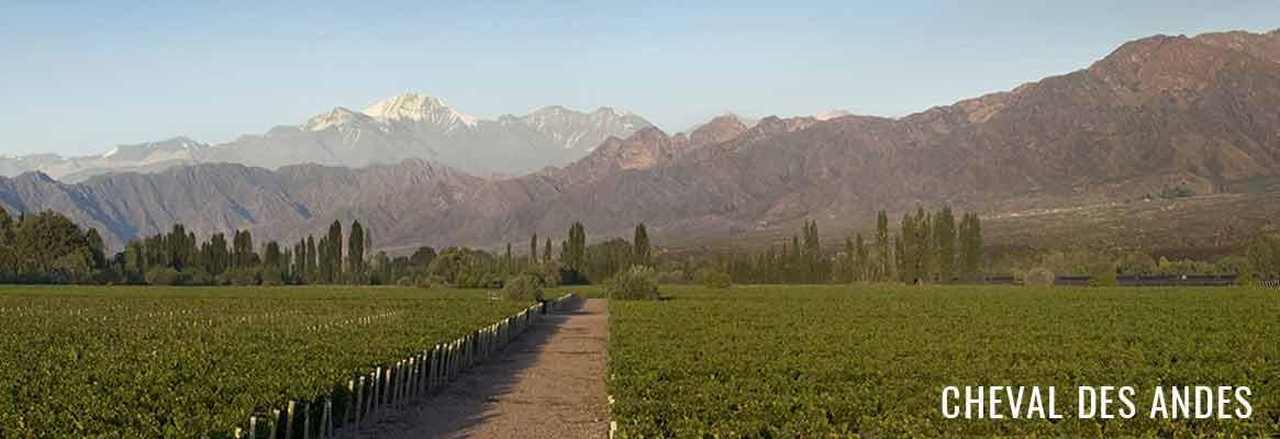 Cheval des Andes, grands vins rouges argentins