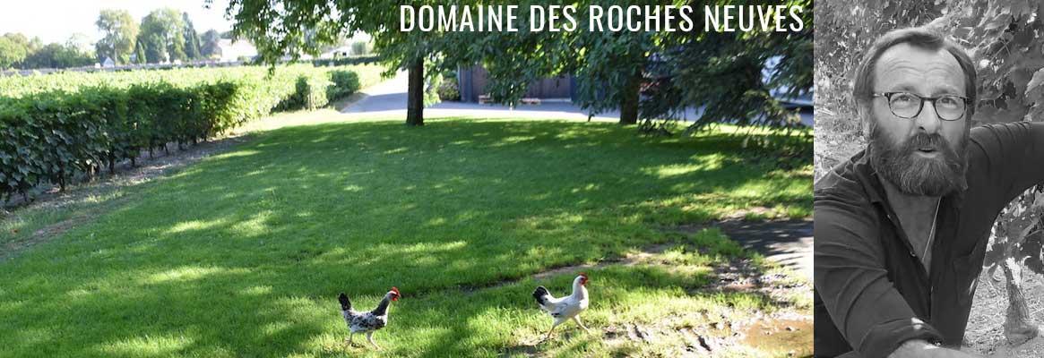 Domaine des Roches Neuves, grands vins de Saumur en biodynamie
