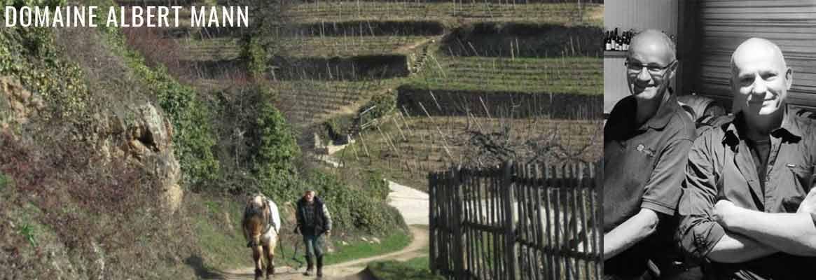 Domaine Albert Mann, grands vins d'Alsace