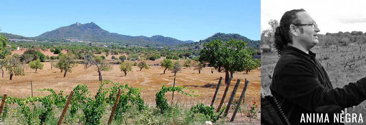 Anima Negra, vins espagnols des Baléares sur l'ile de Majorque