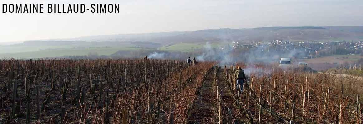 Domaine Billaud-Simon Grands vins de Chablis