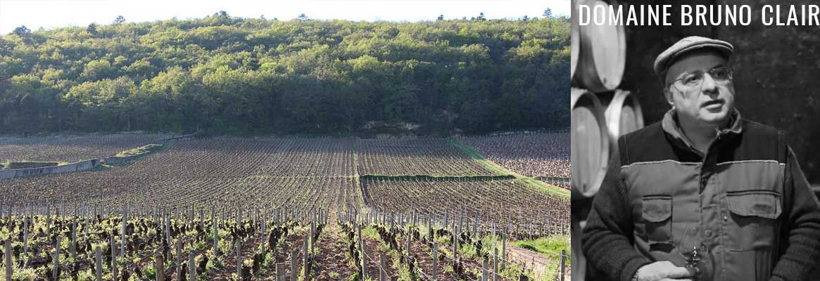 Domaine Bruno Clair, grands vins de Bourgogne