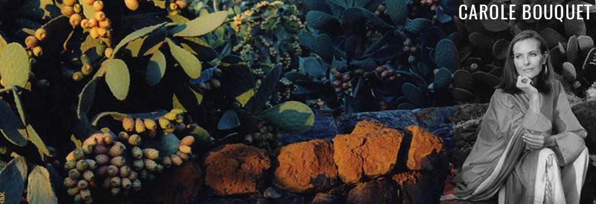 Carole Bouquet, Sangue d'Oro, Moscato di Pantelleria