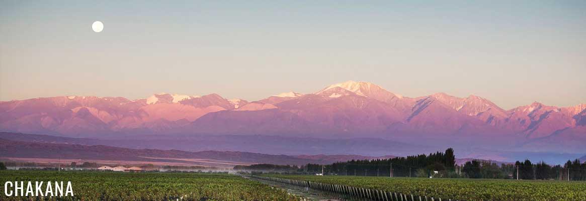 Chakana Nuna Estate, vins argentins en biodynamie de Mendoza