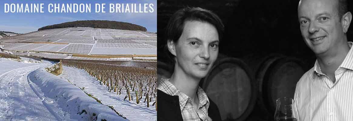 Domaine Chandon de Briailles, grands vins de Corton, Pernand-Vergelesses et Savigny-les-Beaune