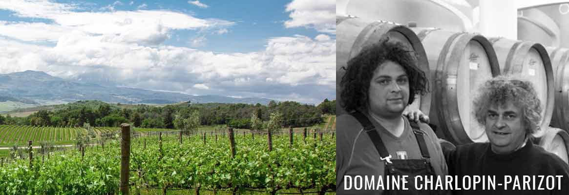 Domaine Charlopin, grands vins de Bourgogne à Gevrey-Chambertin