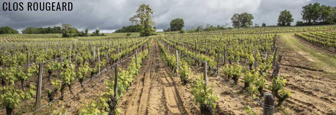 Clos Rougeard, vins d'exception de Saumur et Saumur-Champigny
