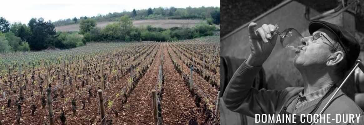 Domaine Coche-Dury, grands vins de Meursault