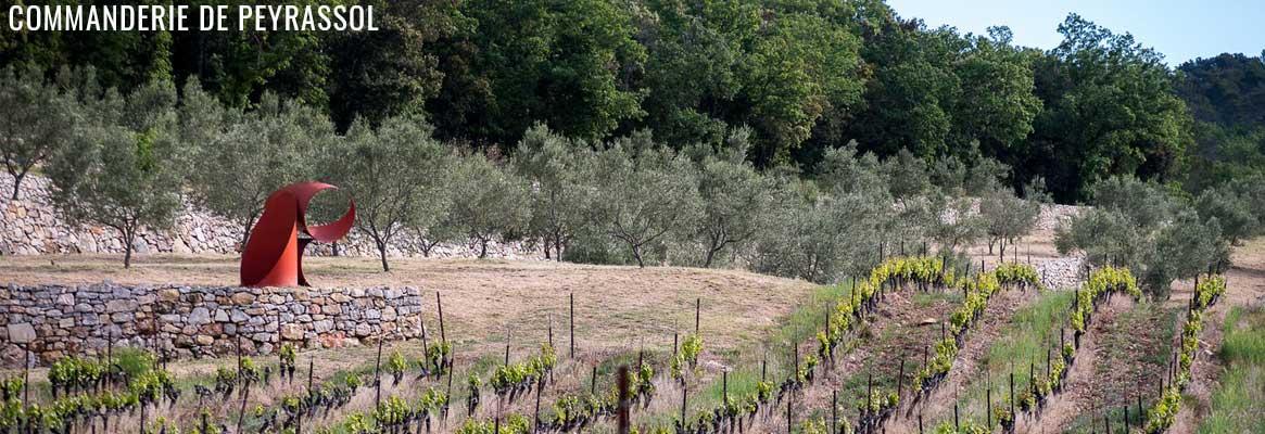 Comamnderie de Peyrassol, grands vins rosés, blancs et rouges en Côtes-de-Provence