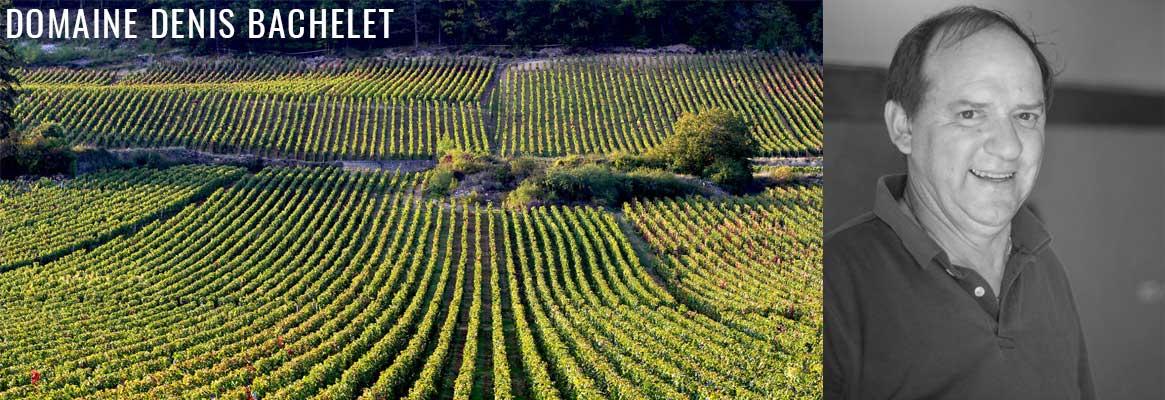 Domaine Denis Bachelet, grands vins de Gevrey-Chambertin