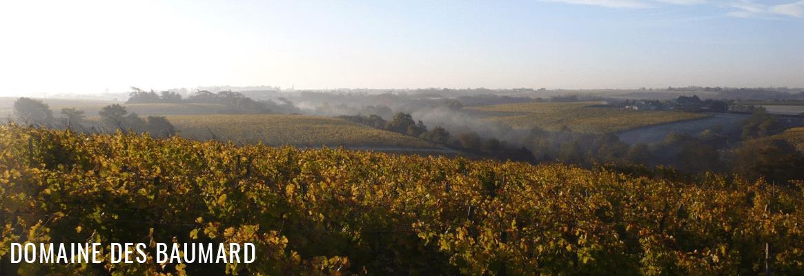 Domaine des Baumard, grands vins d'Anjou, de Savennières, Coteaux du Layon, Quarts de Chaume