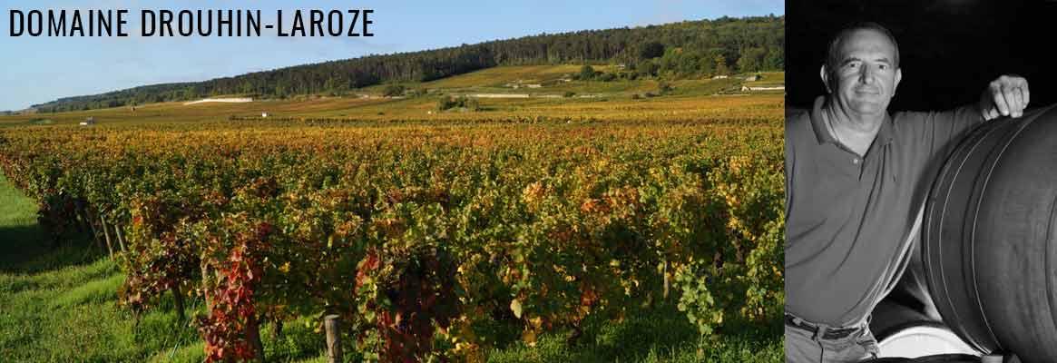 Domaine Drouhin-Laroze, grands vins de Bourgogne