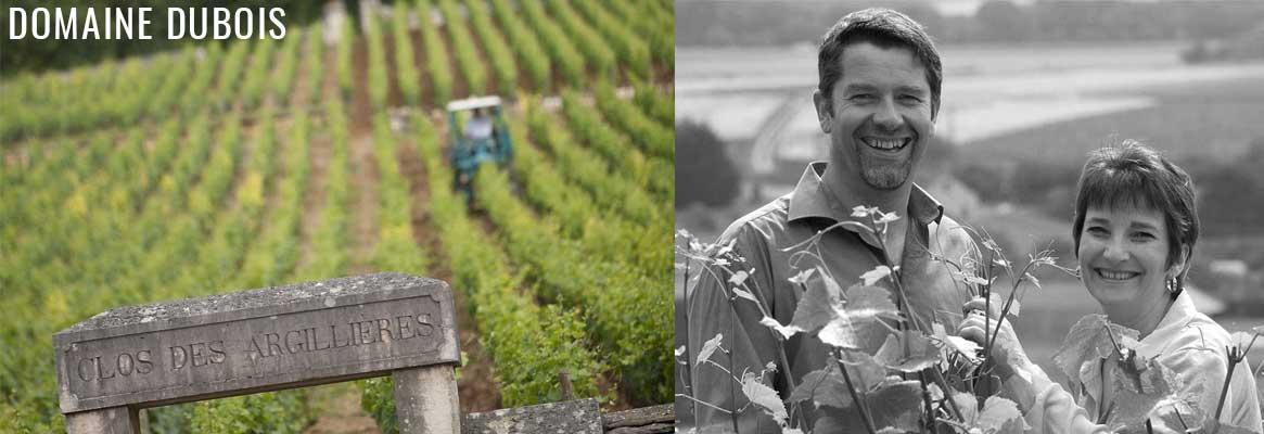 Domaine Dubois Père & Fils, grands vins de Bougogne