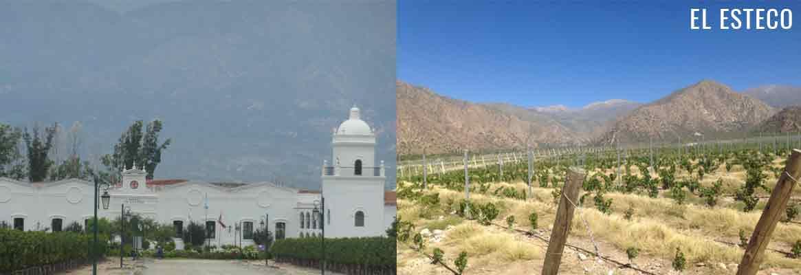 El Esteco, grands vins argentins des vallées Calchaquies