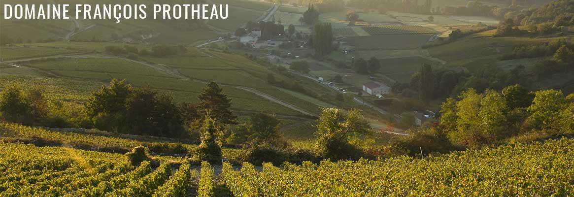 Domaine François Protheau, grands vins de Bourgogne