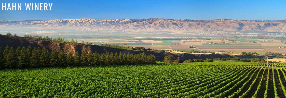 Hahn Winery, vins de Californie, Zinfandel, Cabernet-Sauvignon et Chardonnay