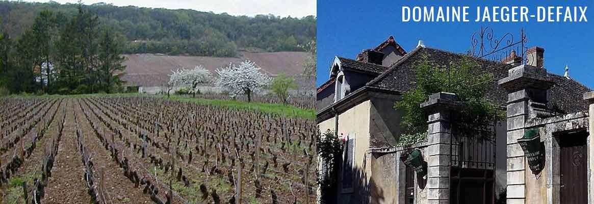 Domaine Jaeger-Defaix, vins blancs et rouges de Bourgogne en apppellation Rully et Rully 1er Cru