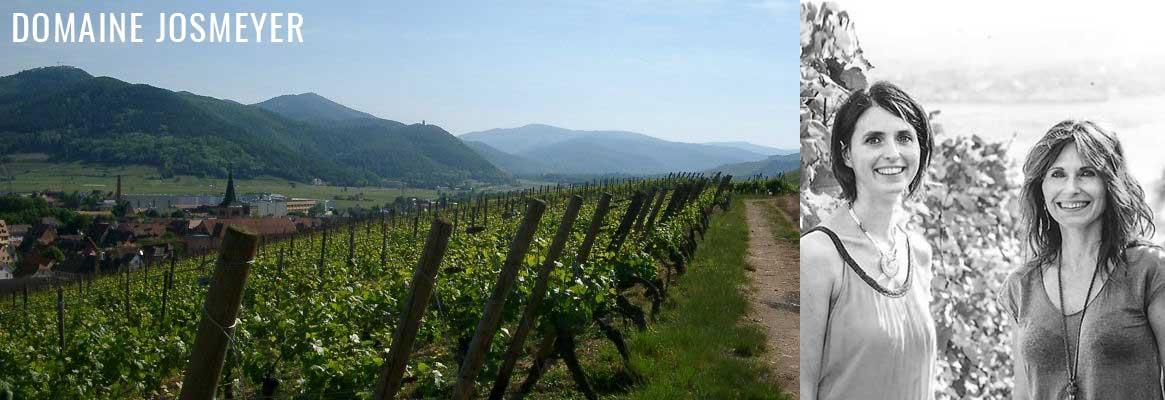 Domaine Josmeyer, grands vins d'Alsace, grands crus d'Alsace
