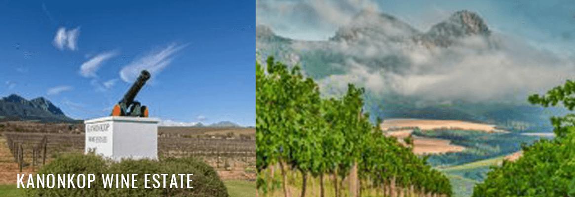 Kanonkop vins Afrique du Sud