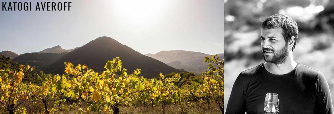 Domaine Katogi Averoff, vins grecs de la région de Metsovo en Epire