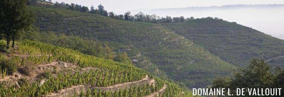 Domaine L. De Vallouit, grands vins de la Vallée du Rhône