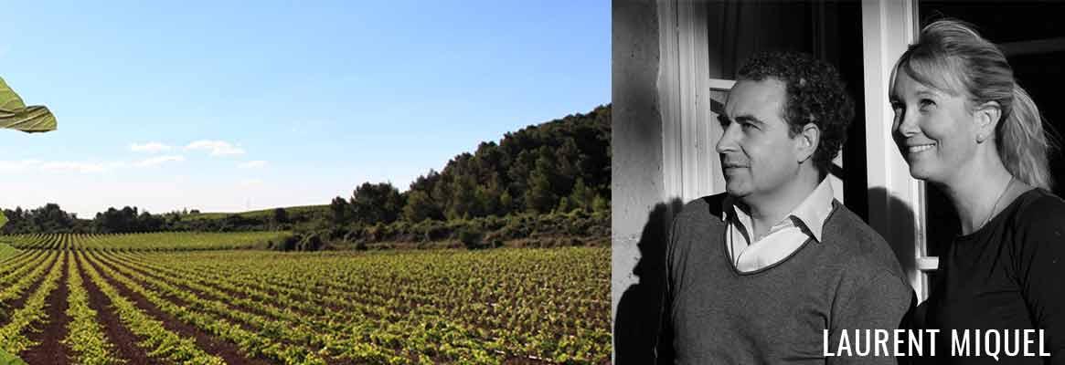Domaine Laurent Miquel, grands vins de Saint-Chinian et Corbières