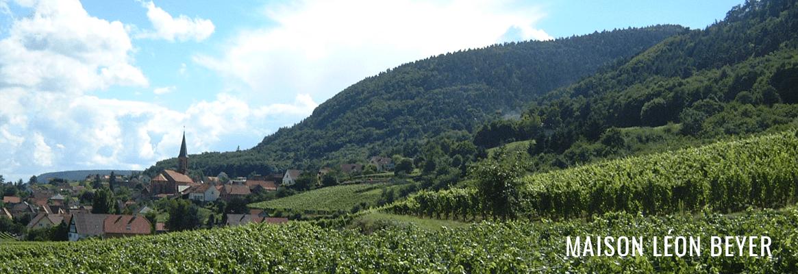 Domaine Léon Beyer
